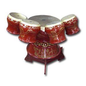 instrumento musical dan trong