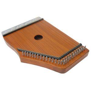 instrumento musical swarmandal